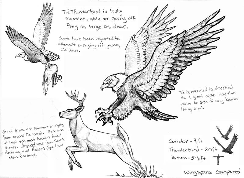 Criptid Fieldbook Thunderbird By Painted Wolfs Den
