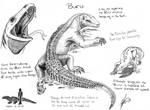Criptid Fieldbook: Buru