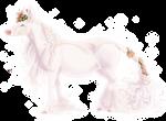 Amara | Doe | Princess |  deceased
