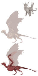 Wyvern Anatomy WIP by Pythosart