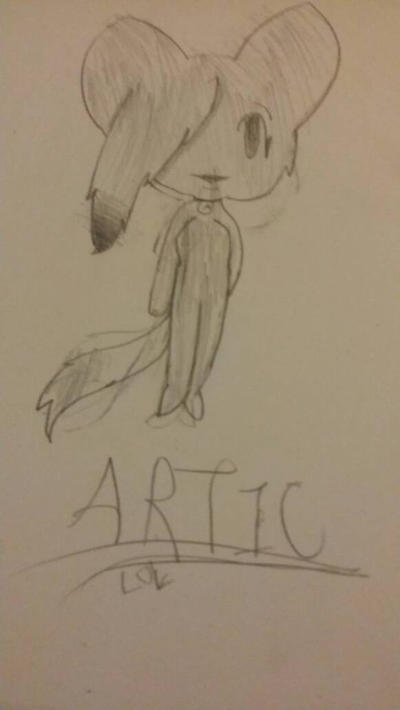 Artic by ExoticDrawings