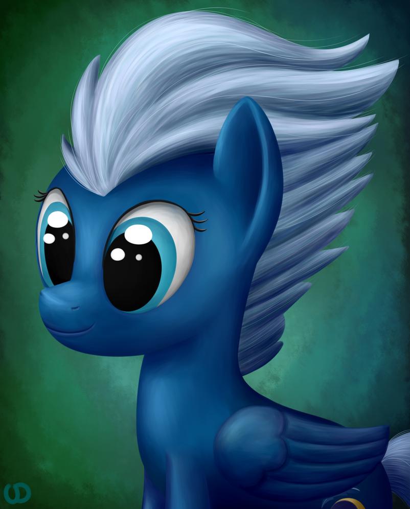 Night Glider Portrait