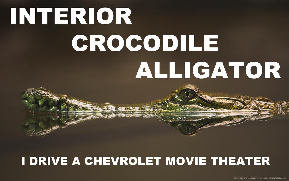 Awesome Interior Crocodile Alligator By Youoweadam ...