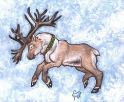 Caribou Run 2004 by Wolfyu
