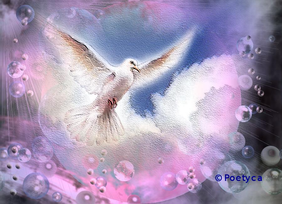 Peace and Harmony by poetyca on DeviantArt