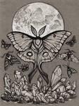 crystal moon moth