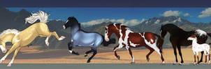 Wild horse Herd Adopts! 2/4 OPEN