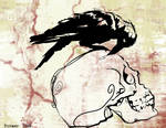 The Crow and The Skull