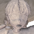 [MMD ASFR] Narumi is Petrified by Cole207