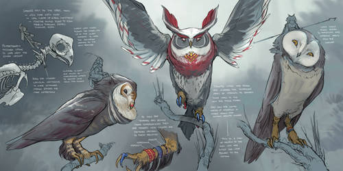 The Hoch Owls - Concepts by Tck--Tck