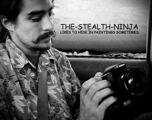 The-Stealth-Ninja's Profile Picture