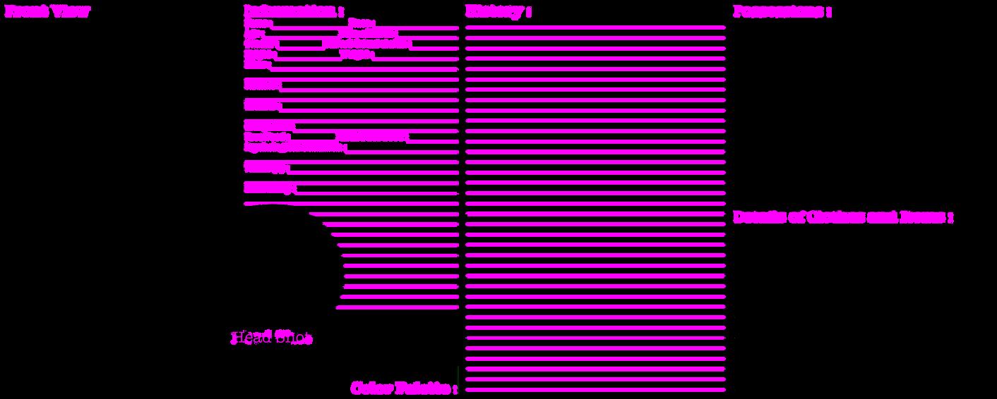 blank character model sheet
