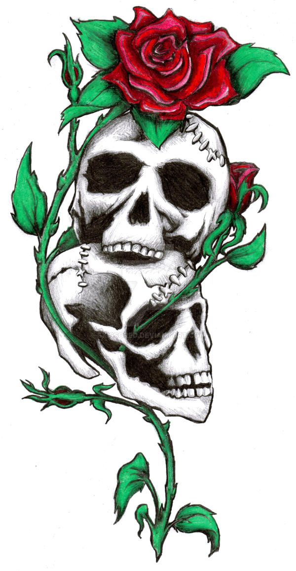 Skulls and Roses by Skissored
