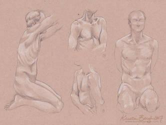 Figure Anatomy: Torso Studies by KrisCynical