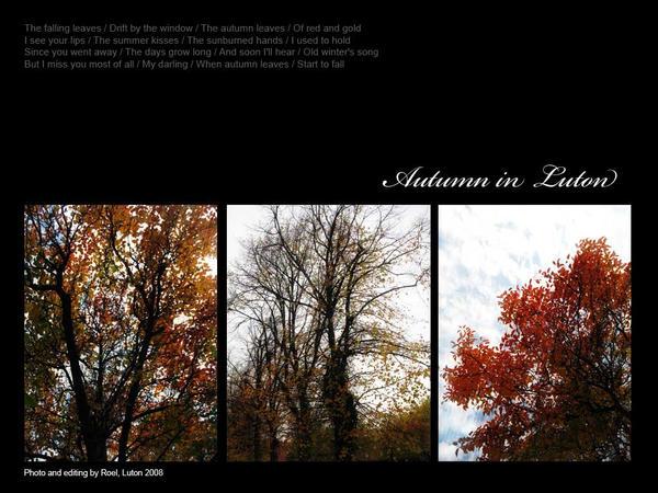 Autumn in Luton