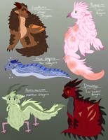 original dragon species by sharkphobia