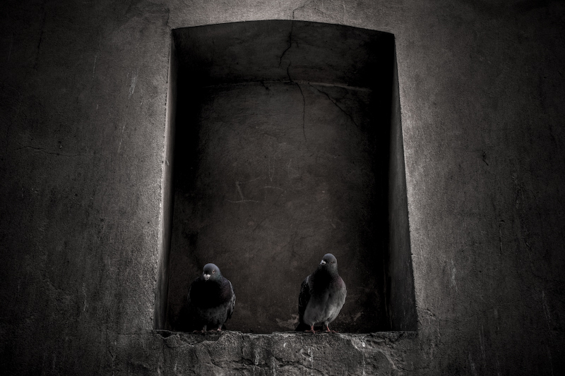 . Two psychos . by trocker