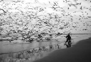 Freedom - II by du-la
