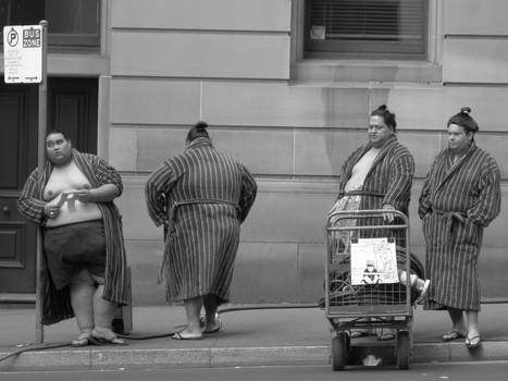 sumo in the street