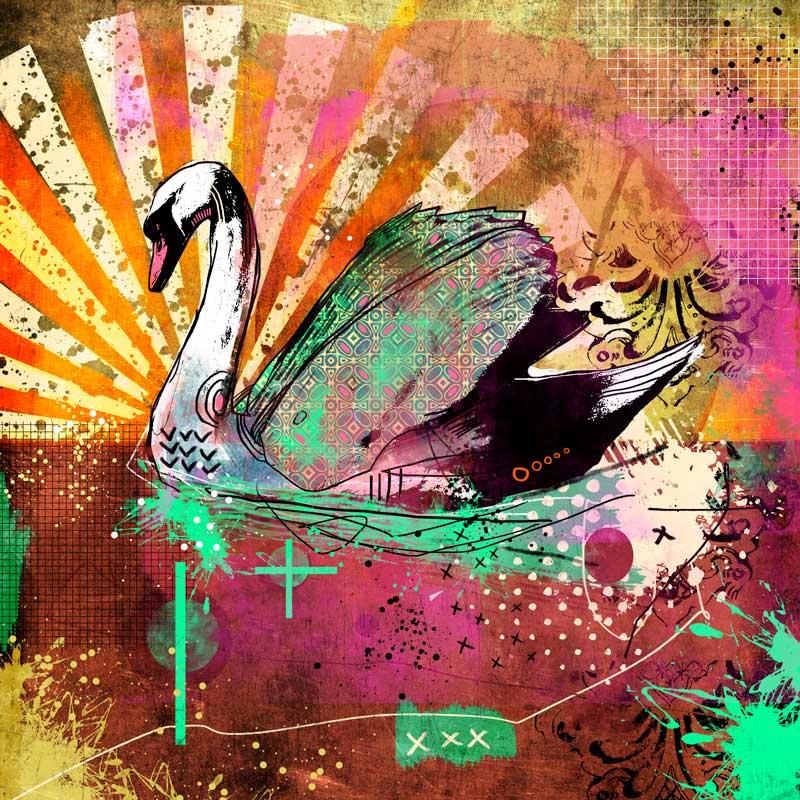 Swan by Nonsense-Prophet