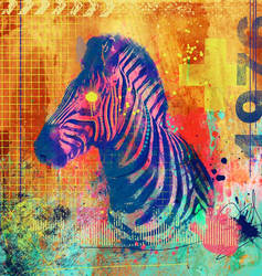 Zebra Tang