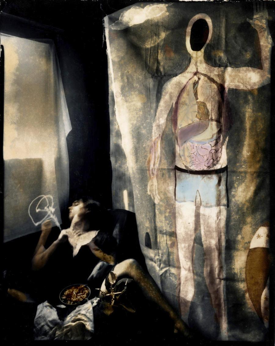 basics of alchemy, anatomy and by lauren-rabbit