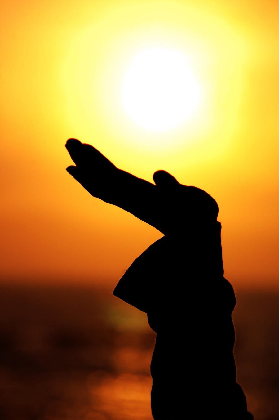 rise of the sun by Haditya on DeviantArt   title   rise of sun