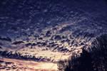 Sunrise At 6 AM