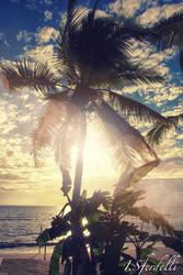 Paradise by kadet13