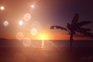 Flares on the Beach by kadet13