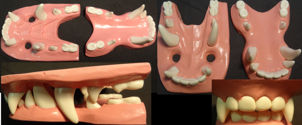 toony_dragon_jawset_by_dreamvisioncreations-d69wwmm.png