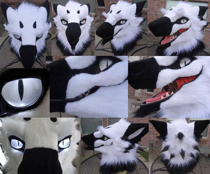 Boss Sergal Head by DreamVisionCreations