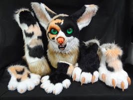 Calico Fennec Partial Suit Up For Offers! by DreamVisionCreations