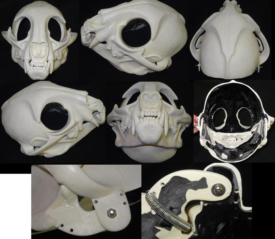 Skeletal Feline Head by DreamVisionCreations