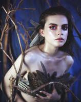 Lady Hawk by Furrrka