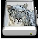 Snow Leopard Drive by junglerob