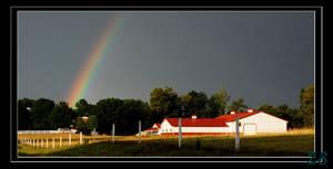 Rainbow 1 Farm 3