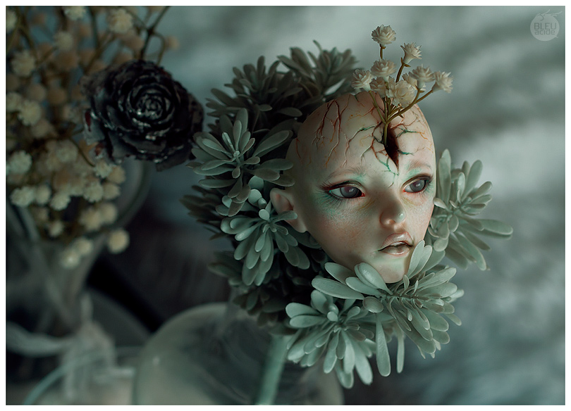 Jardin d'hivers by Bluoxyde