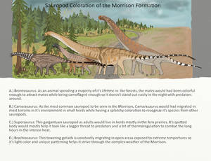 Sauropod colorations of the Morrison