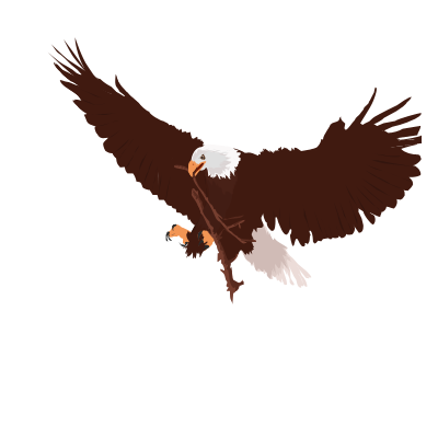 Simple Eagle Vector by MMantas on DeviantArt