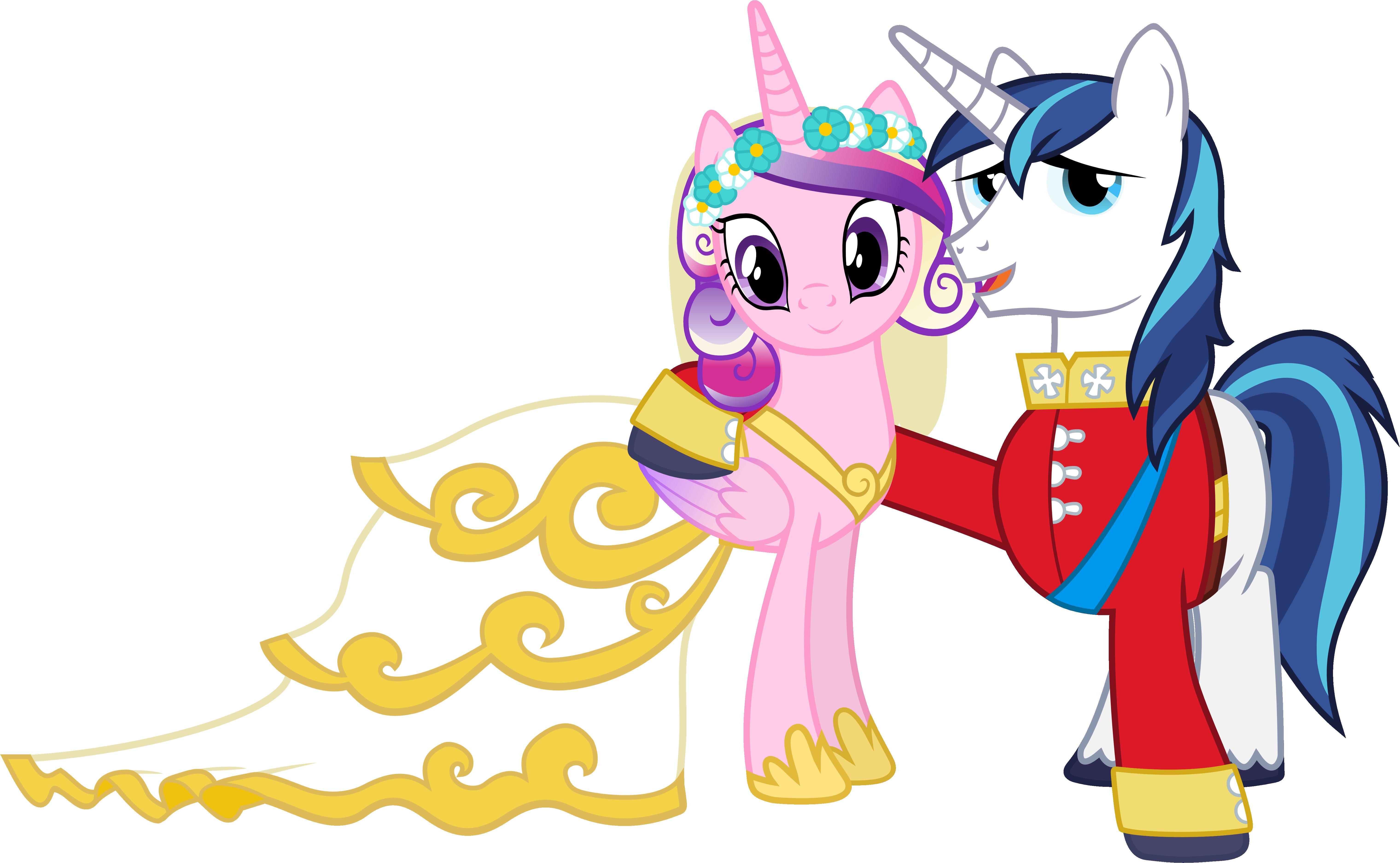 Princess Cadence And Shining Armor Honeymoon | www.imgkid ...