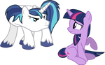 Shining's and Twilight's First Fight