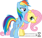 Fluttershy and Rainbow Dash Playing