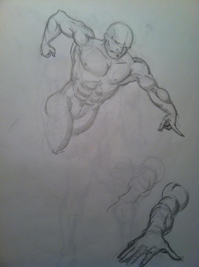 Human anatomy practice