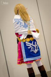 Zelda Skyward Sword - Back View