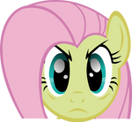 Fluttershy Stare