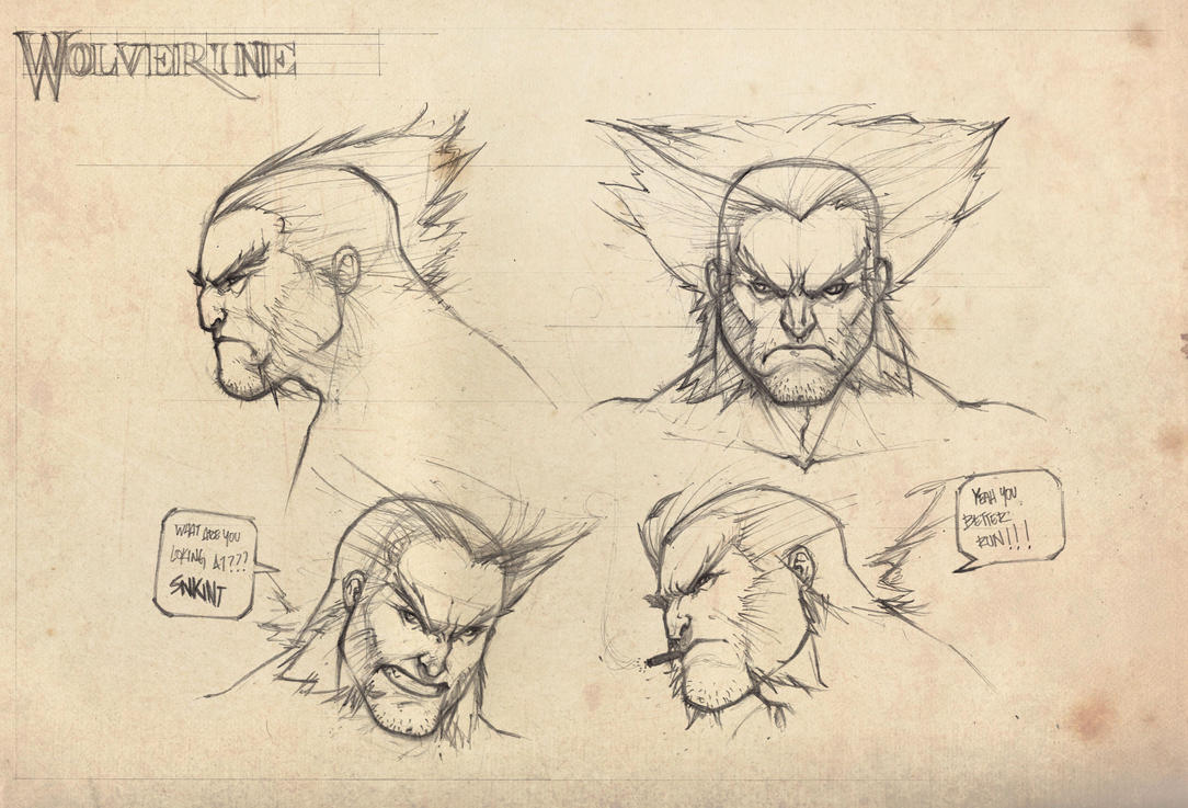 Wolvie Faces Study by biroons