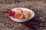 Autumn chocolates by sailorriceball