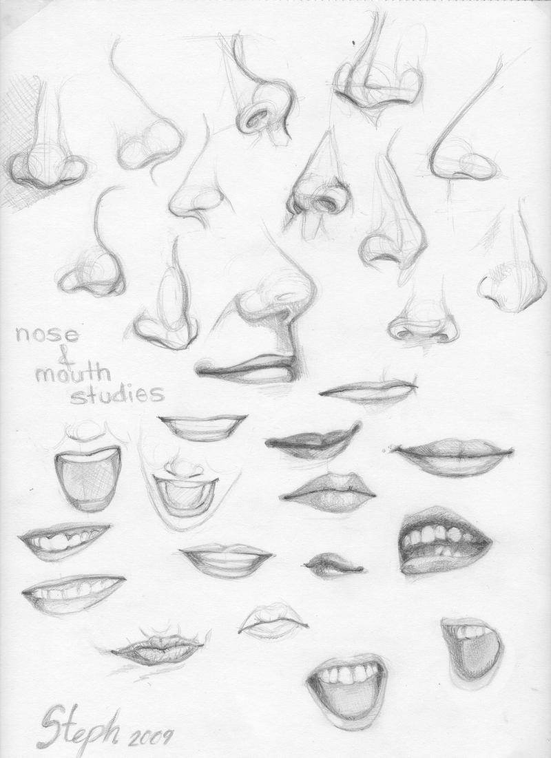 Line Art Nose : Nose and mouth studies by tigre lys on deviantart