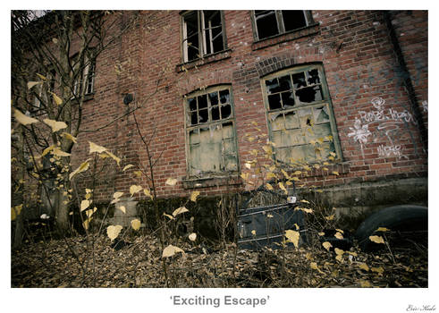 Exciting Escape